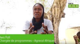 Vidéo – L'opération 11.11.11. au Sénégal