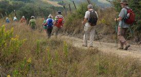 A pied sur le chemin d'Assise – La traversée de la Toscane