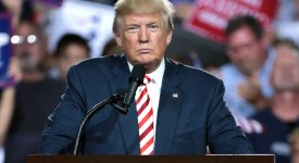 Résultats des Midterms 2018: une Amérique divisée