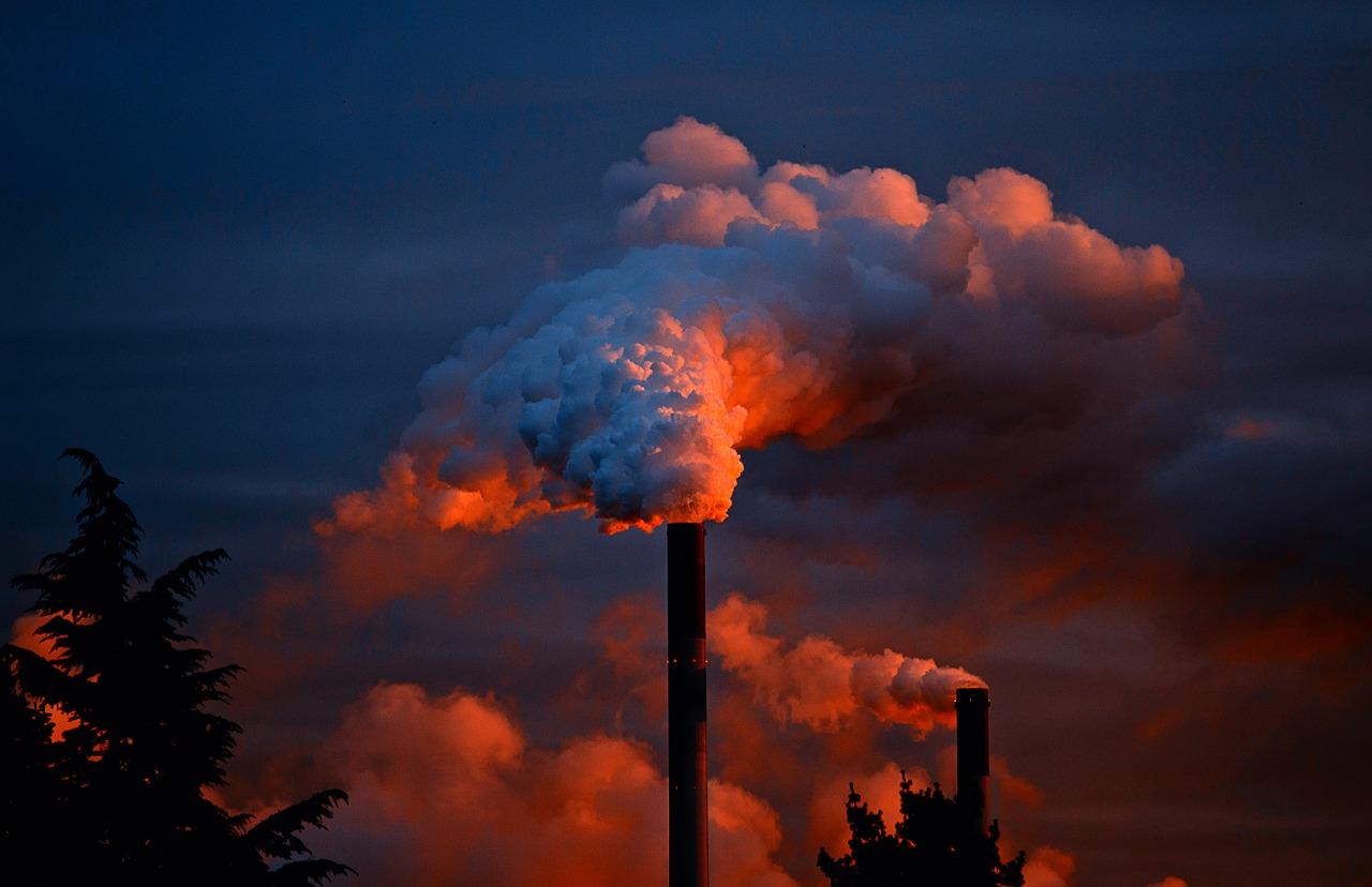 5 JUIN: Journée mondiale de l'environnement
